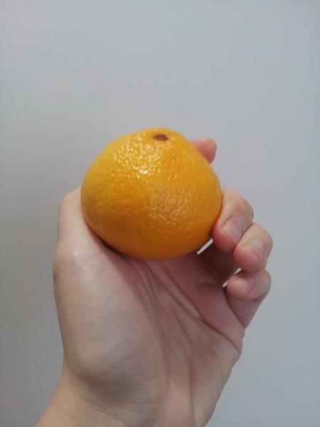 Najslađa mandarina na svetu