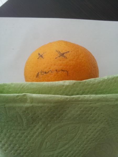 Mandarina spava
